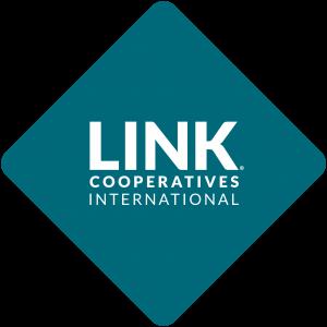LINK_logo_ok300
